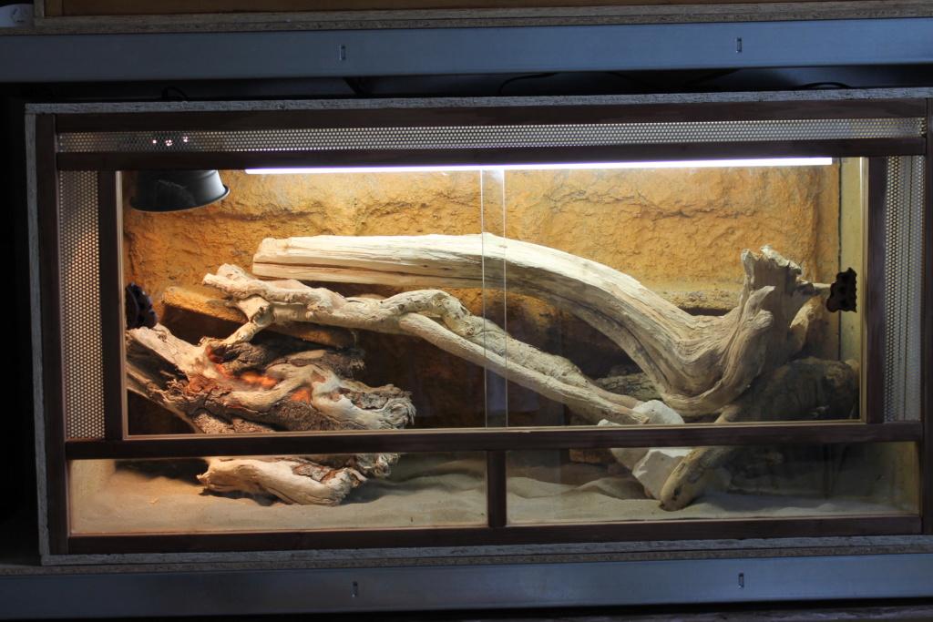 eclairage et chauffage preconisé pour un terrarium obs 150*60*60? Img_0511