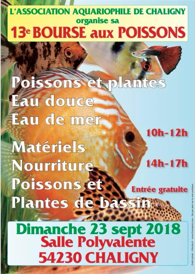 Bourse de Chaligny (54) - 23 septembre 2018 Affich10