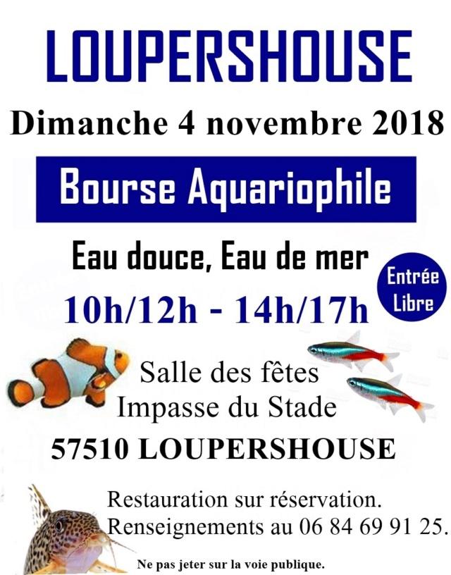 Bourse Loupershouse (57) - 4 novembre 2018 Affich13