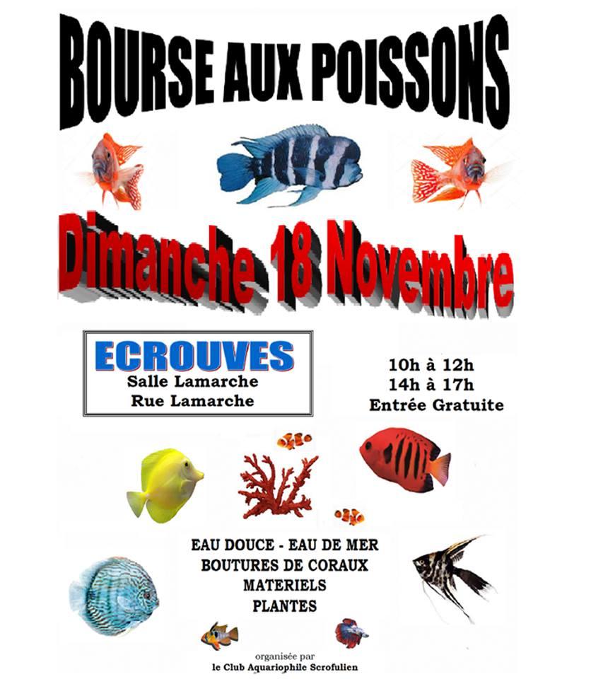 Bourse Ecrouves (54) - 18 novembre 2018 Ecouvr10