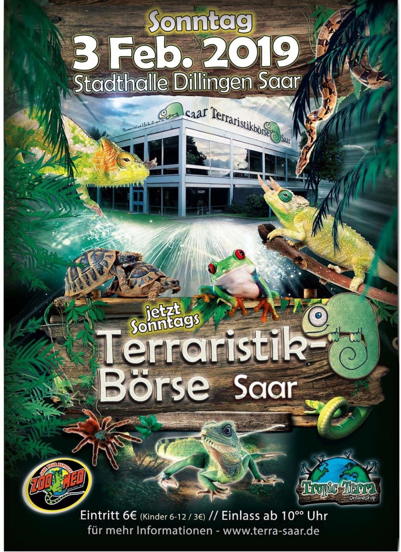 Terraristik-Börse Dillingen (DE) - 3 février 2019  Fb_img10