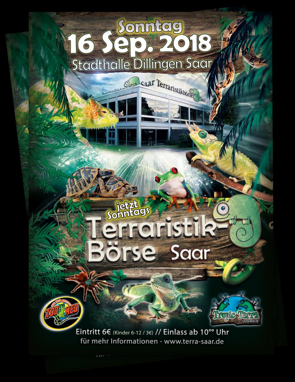 Terraristik Börse DILLINGEN (DE) - 16 septembre 2018 Terra_10