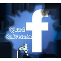 Quad Salvetain - Portail Logo-f10
