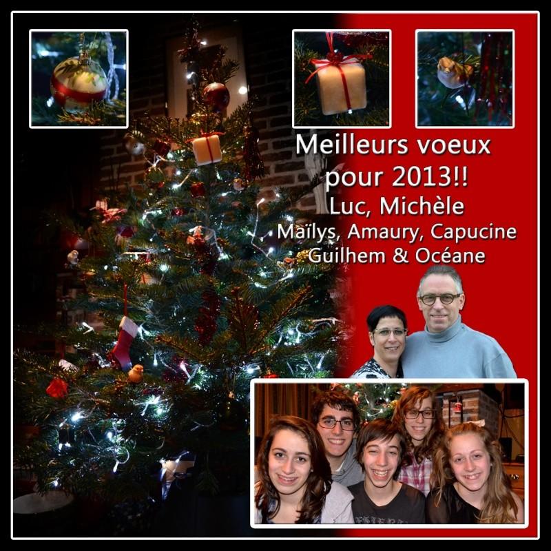 Bonnes Fêtes et Meilleurs Vœux à tous pour 2013 - Page 5 Cid_9310