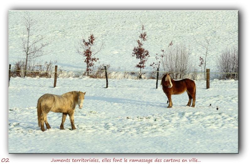 Troisième épisode neigeux... P1090411