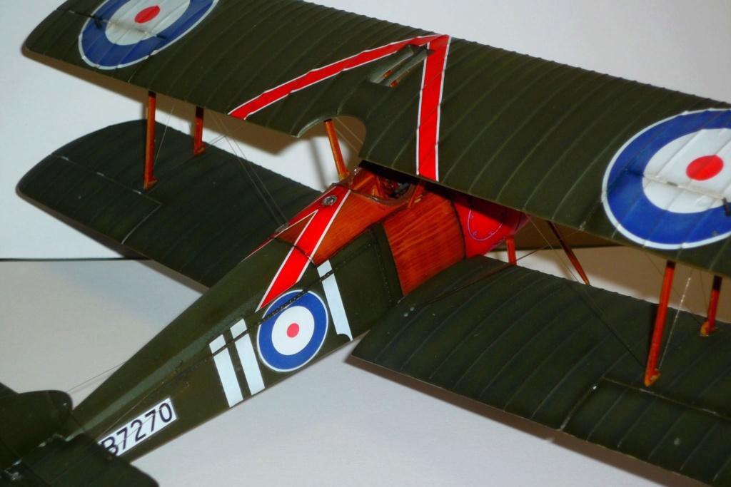 Albatros D.V l'avion du baron rouge - Page 8 12322810