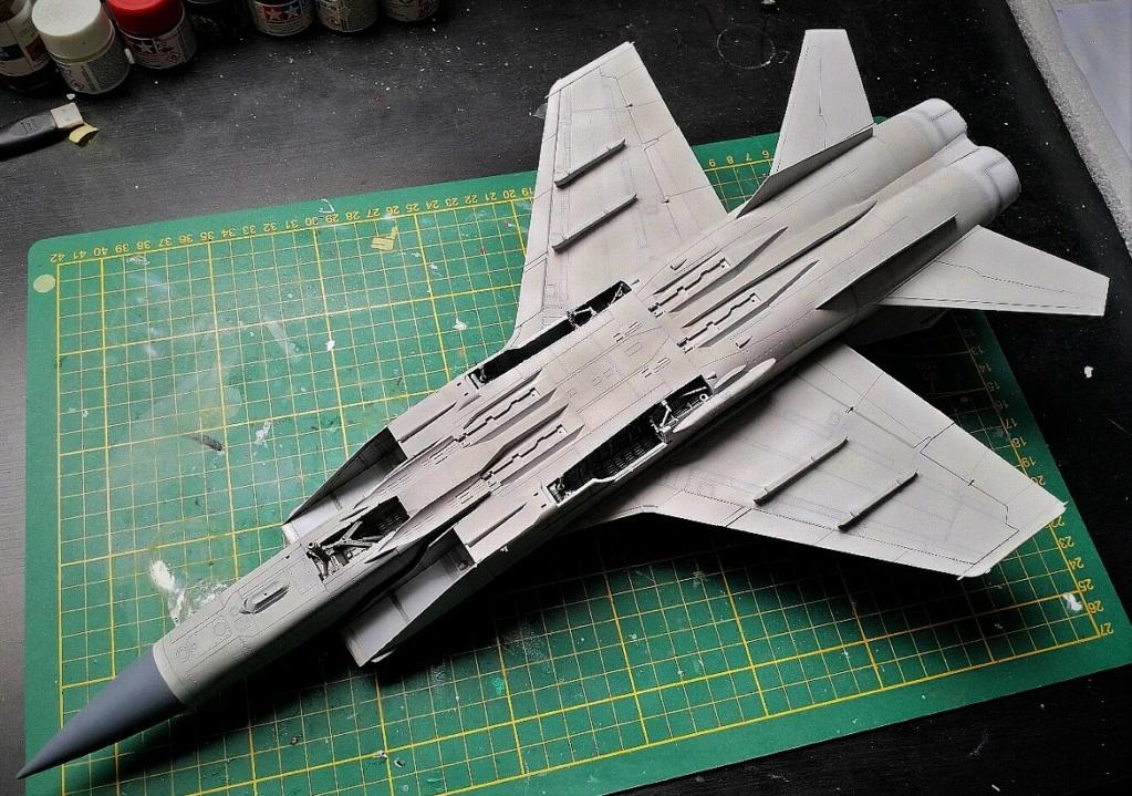 "Mikoyan-Gurevitch MiG-31 BM/BSM ""Foxhound"" (AMK 1/48) - Page 8 Img_2041"