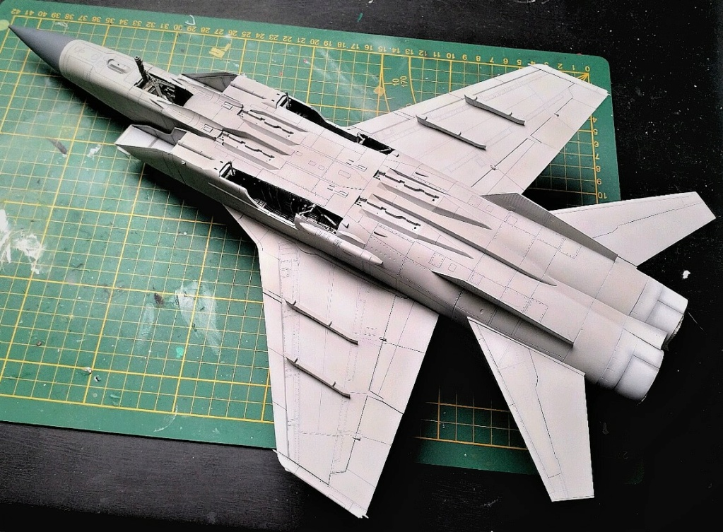 "Mikoyan-Gurevitch MiG-31 BM/BSM ""Foxhound"" (AMK 1/48) - Page 8 Img_2043"