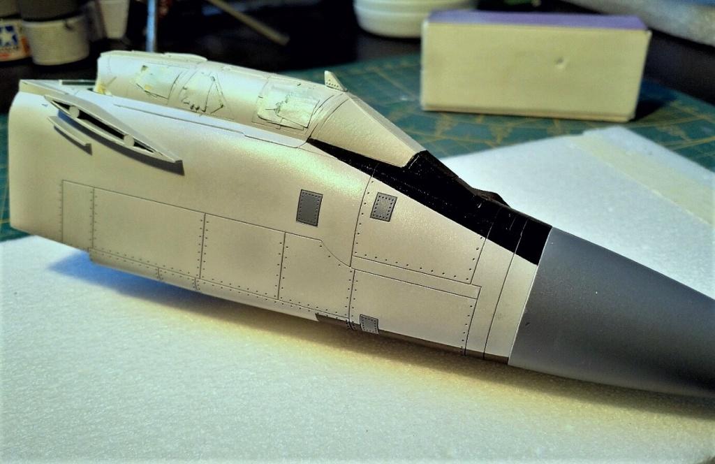 "Mikoyan-Gurevitch MiG-31 BM/BSM ""Foxhound"" (AMK 1/48) - Page 8 Img_2046"
