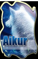 Graphismes/Textes = Top'S Aikur110
