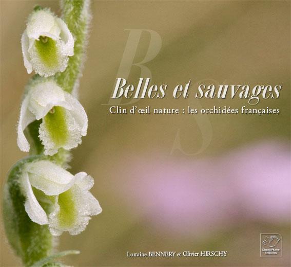 Belles et sauvages Une balade parmi les orchidées de France Belles10