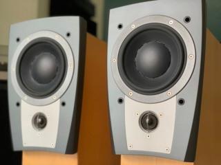 Dynaudio Confidence C1 Speaker (Used) C1_fro14