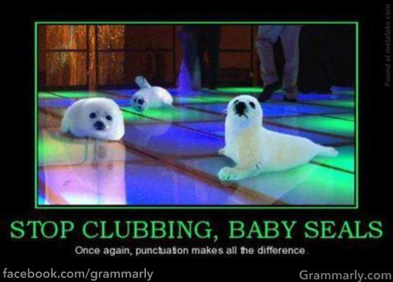 Punctuation Counts! 40661010