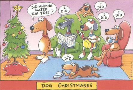 More Christmas Fun Funny-18