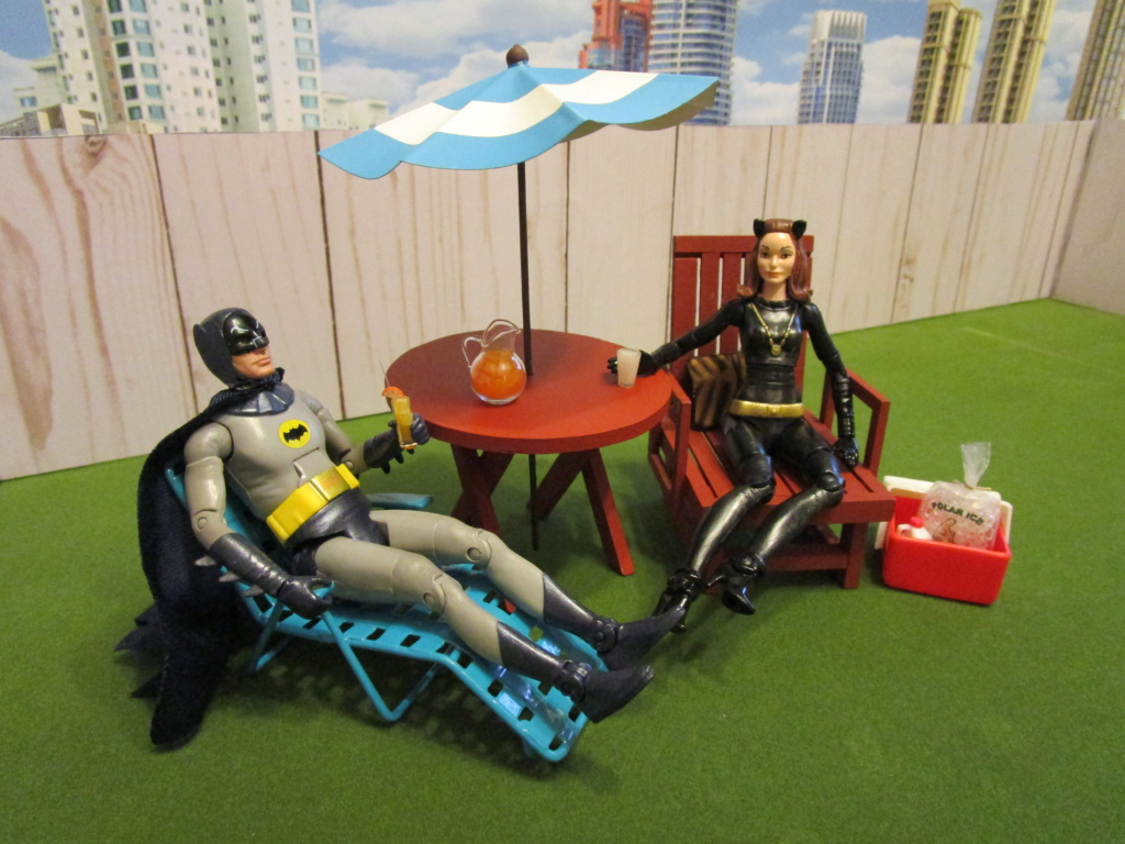 The Figures of DC Comics. - Page 6 Img_0211