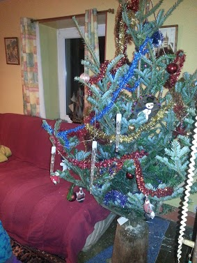 Tr:Notre séjour féerique parmi les rennes et les chiens de traineau...... - Page 2 20121226
