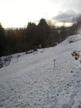 Tr:Notre séjour féerique parmi les rennes et les chiens de traineau...... - Page 2 20121234