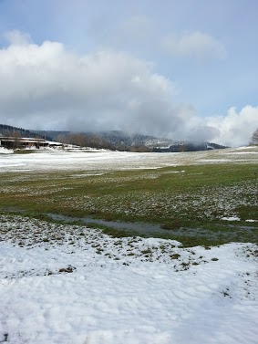 Tr:Notre séjour féerique parmi les rennes et les chiens de traineau...... - Page 2 20121246