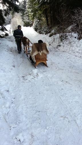 Tr:Notre séjour féerique parmi les rennes et les chiens de traineau...... - Page 2 Screen17