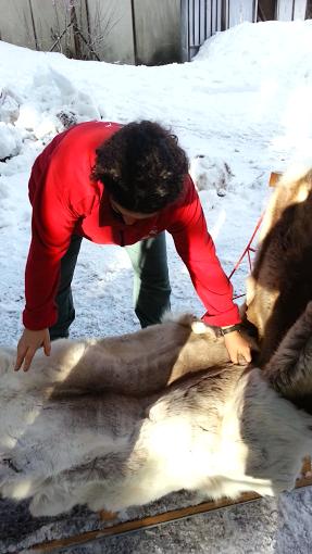 Tr:Notre séjour féerique parmi les rennes et les chiens de traineau...... - Page 2 Screen25