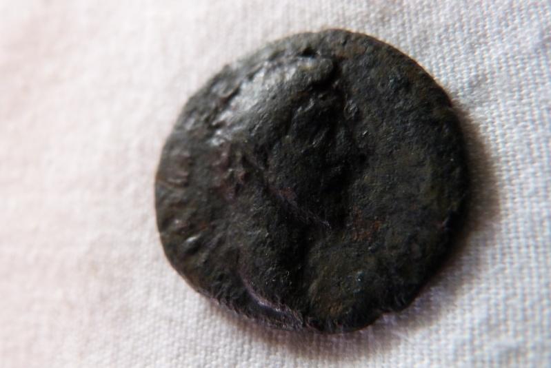 ROMAINE 00212