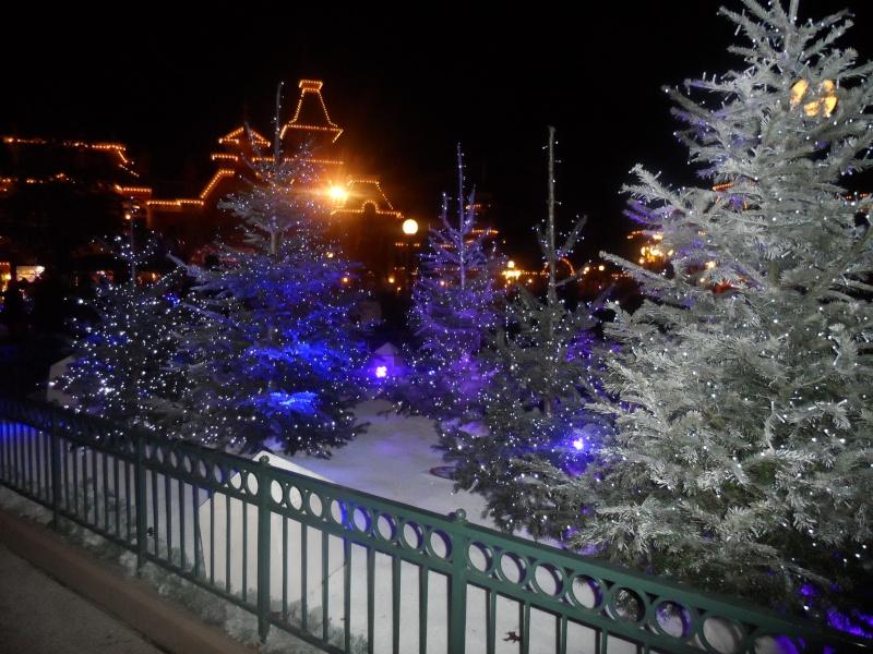Séjour du 02 au 03 décembre 2012 pour mon Noël au Sequoia  - Page 3 Sam_2123