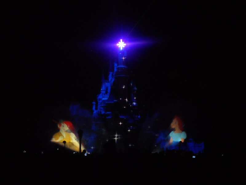 Séjour du 02 au 03 décembre 2012 pour mon Noël au Sequoia  - Page 3 Sam_2128