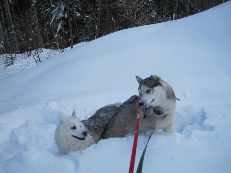 Saskia et Jiro 1014
