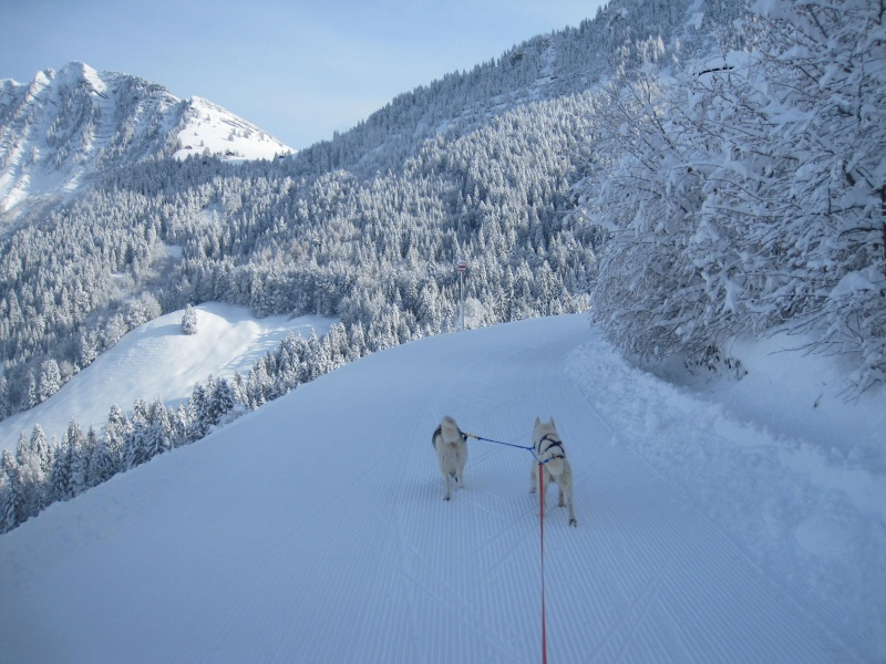 Ski-joering avec deux huskies 112