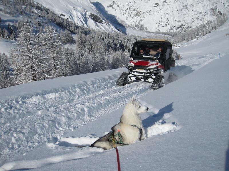 Nouvelles courses de Saskia dans la neige - Page 2 910