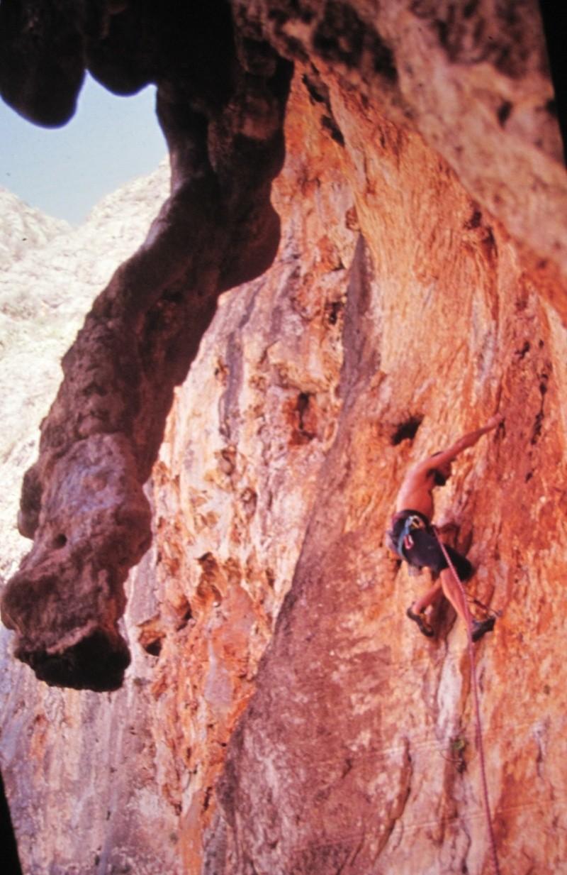 tra roccia e mare..... Img_2511