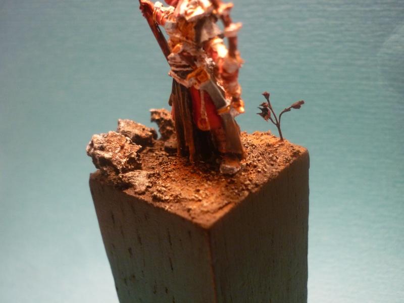 Concours de peinture SdA n°1 : Figurine pédestre P1160533