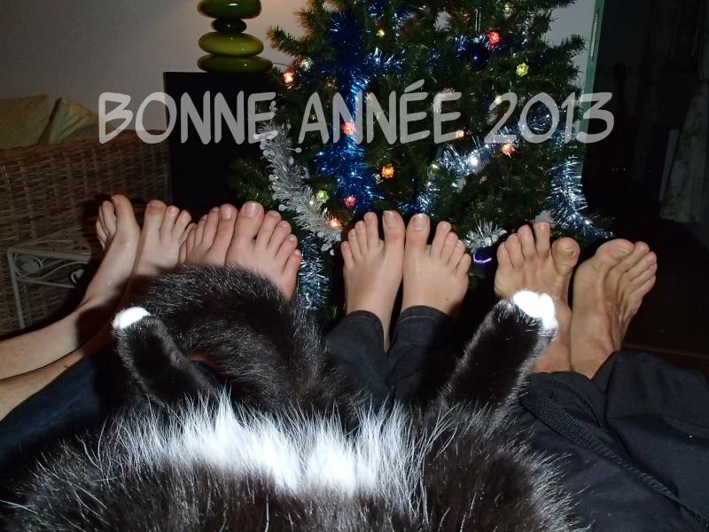 Bonne année aux membres du forum. P1010010