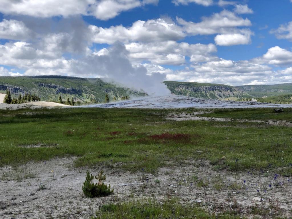 Rando Wyoming, Montana et Colorado  - Page 2 461db210
