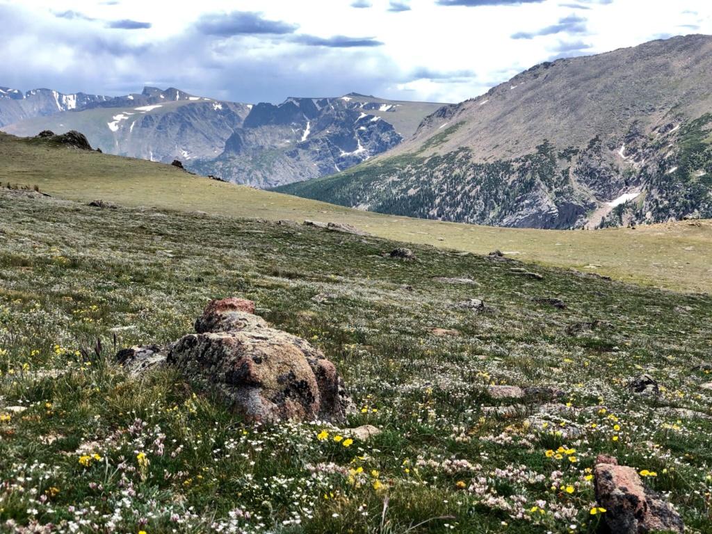 Rando Wyoming, Montana et Colorado  - Page 3 5a7a1410