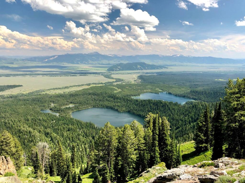 Rando Wyoming, Montana et Colorado  - Page 3 6ddd0c10