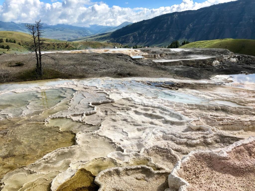Rando Wyoming, Montana et Colorado  - Page 2 7af7dd10
