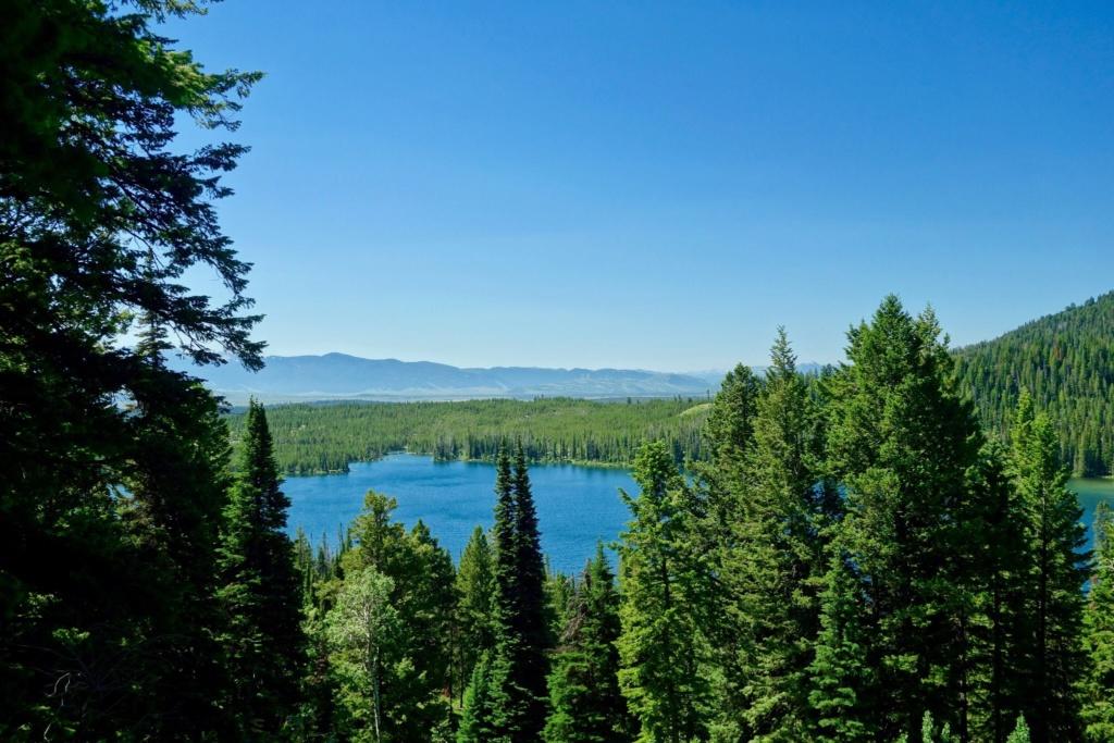 Rando Wyoming, Montana et Colorado  - Page 3 A6dabf10