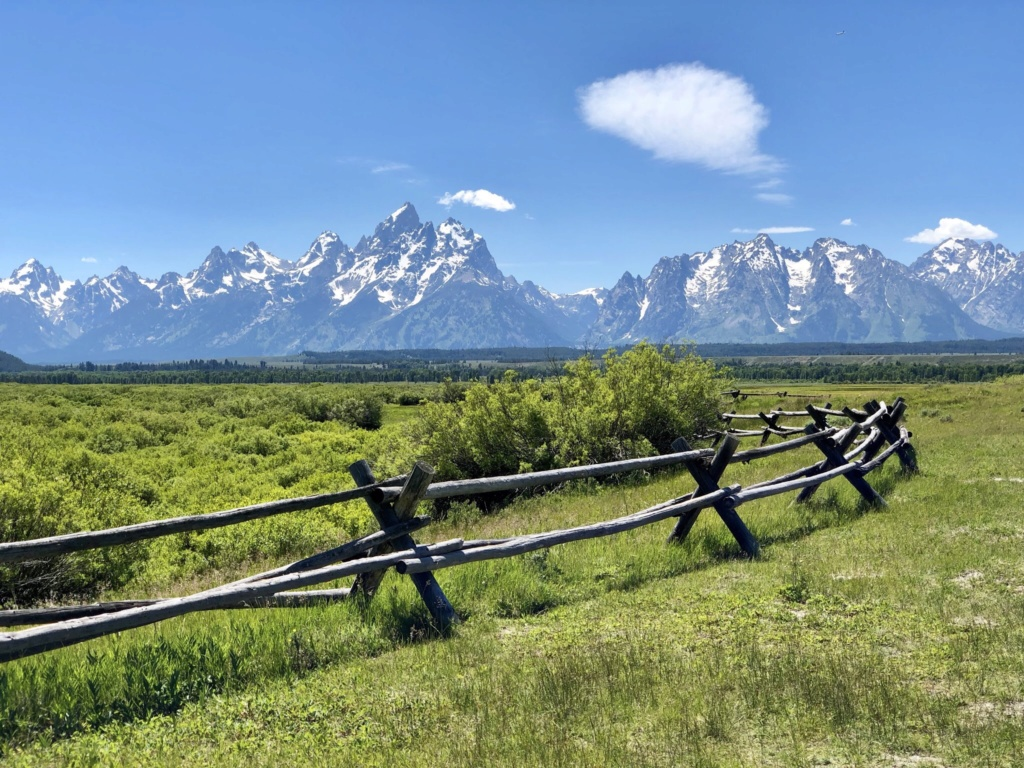 Rando Wyoming, Montana et Colorado  - Page 2 Cd7d1a10
