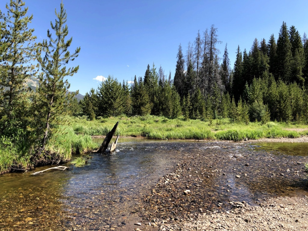 Rando Wyoming, Montana et Colorado  - Page 3 F8c5ae10