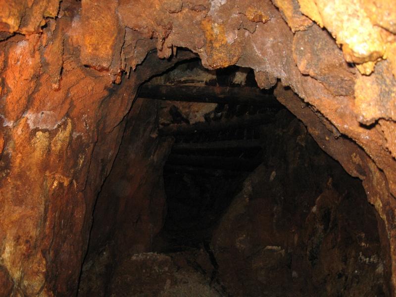 Ancienne mine D'argent <<Segen gottes>>Forêt noire 09411