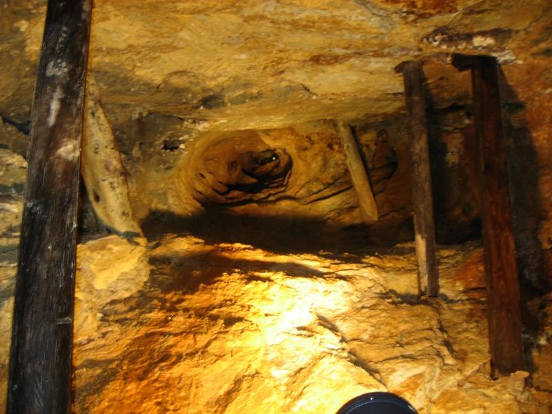Ancienne mine D'argent <<Segen gottes>>Forêt noire 09810