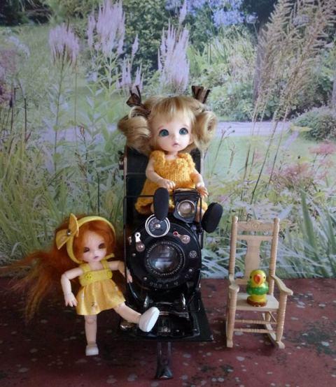 """Mes petites fées... ou le virus """"Fairyland"""" ! Le_pet10"""