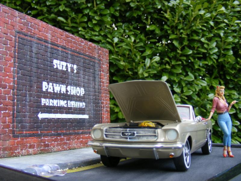 Scénette pour ma Mustang cabrio Dscf8245