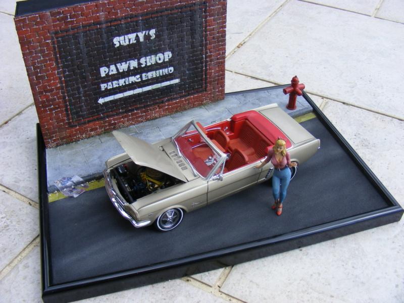 Scénette pour ma Mustang cabrio Dscf8248