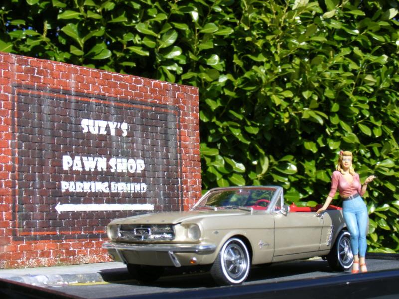 Scénette pour ma Mustang cabrio Dscf8250