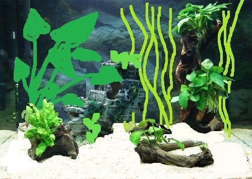 """Mon aquarium Juwel """" Lido 120 """" - Page 2 1_aqua10"""