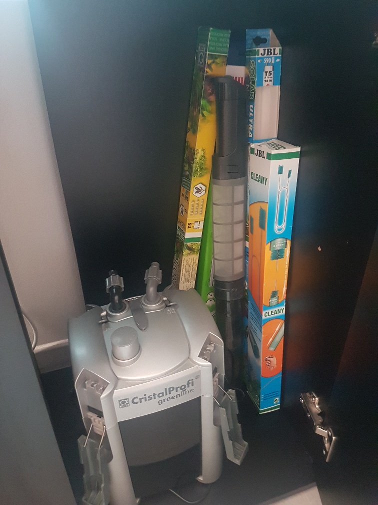 Aquatlantis 240 litres l'histoire continnue... - Page 15 20190812