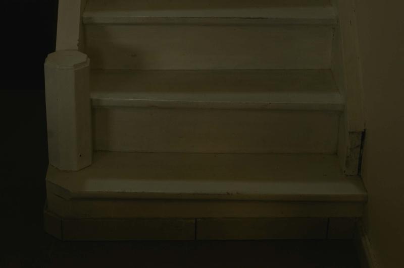 Conseil pour rénovation d'escalier _igp7810