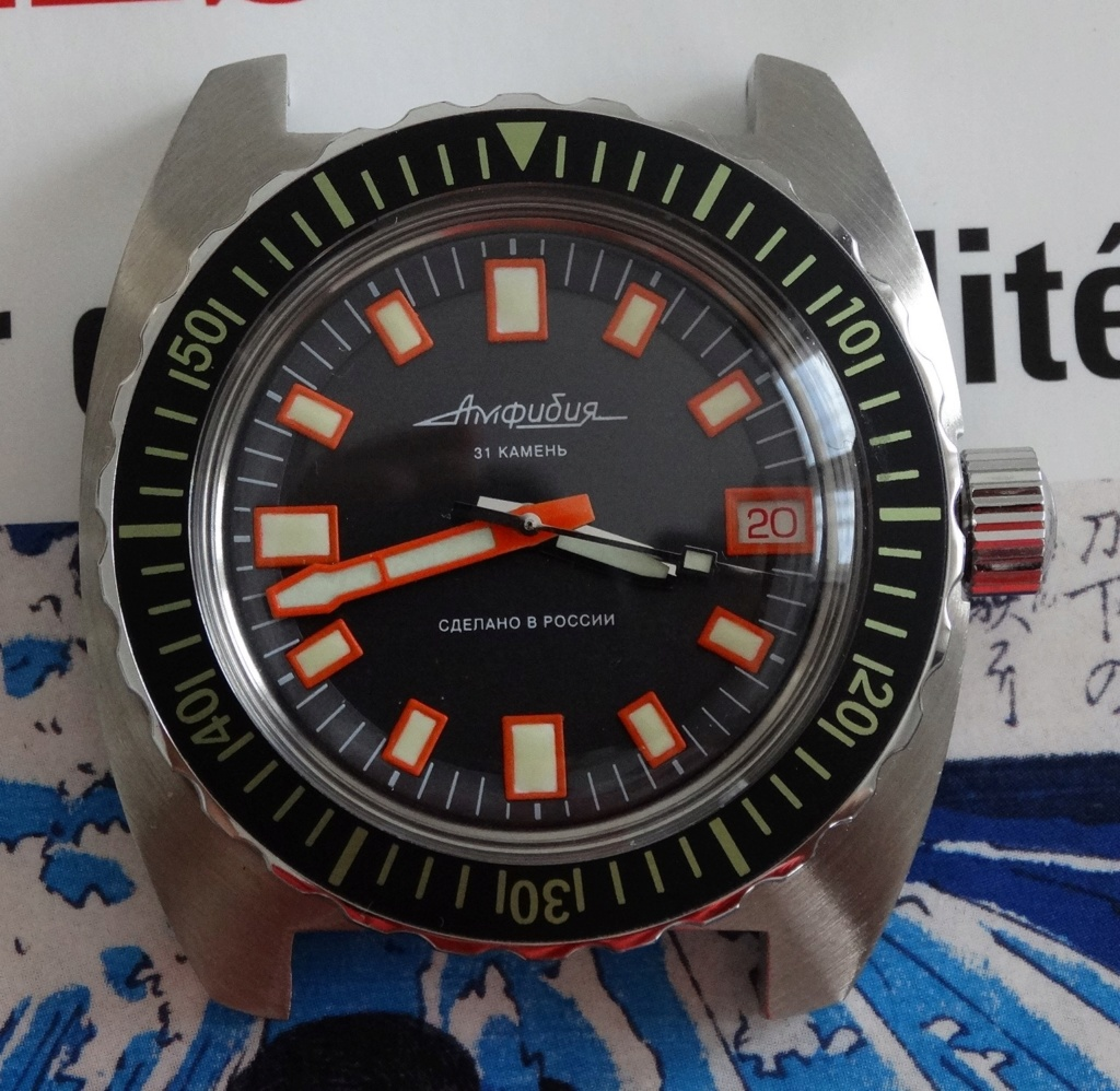 Projet WUS - une Slava amphibian à la sauce Vostok Dsc02316